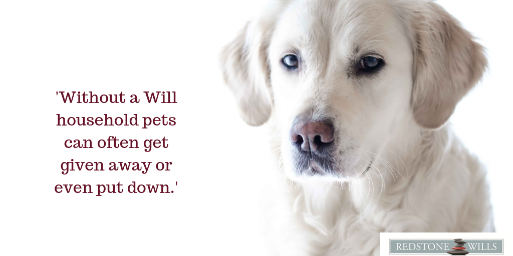 Pets and Your Will-What Happens to Your Pets When You Die?